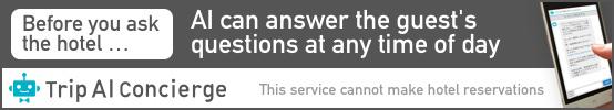 Trip AI Concierge